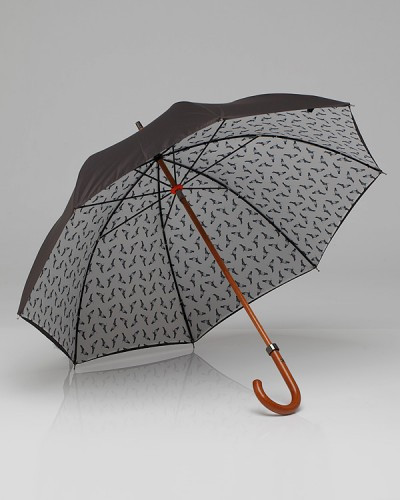 Pigeon Umbrella