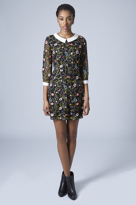 Embroidered Collar Dress New In Topshop