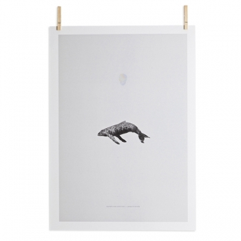 Whale Reprise Poster Stationery Decoration Finnish Design Shop