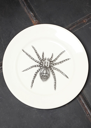 Blackbird Laura Zindel Spider Dinner Plate