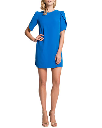 Cynthia Steffe Tulip Sleeve Sunday Dress Cosmic Blue