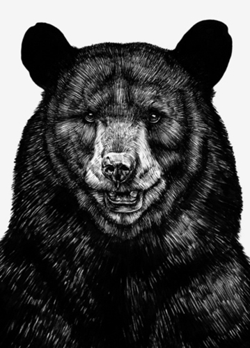 Bear Art Print by Sebastian Gomez De La Torre Society6