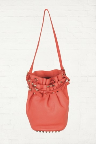 Alexander Wang Diego Bucket Bag In Soft Tang Pebble Leather