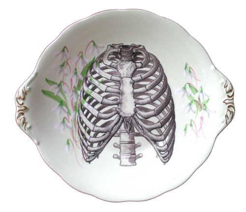 Ribcage Illustration Plate Uncovet