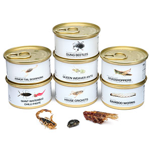 Thinkgeek Edible Bugs Gift Pack