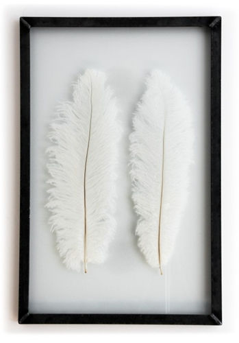 White Ostrich Feathers Lola Kate