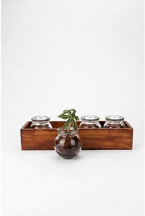 UrbanOutfitters com Window Box Vases