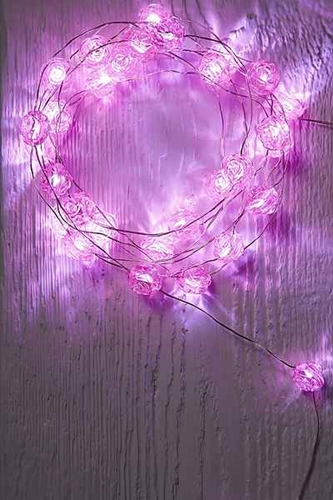 Rosebud String Lights Urban Outfitters