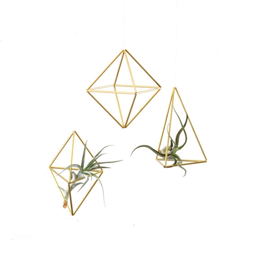 Set Of 3 Brass Himmeli Ornaments Air Plant Hanger By Hruskaa