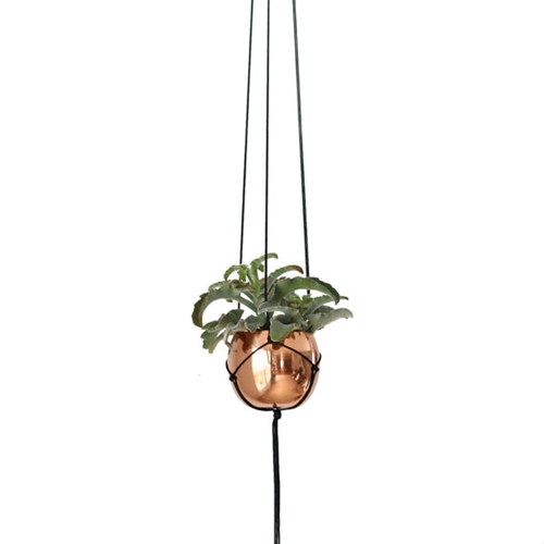 Small Vintage Copper Cup Hanging Planter Modern By Hruskaa