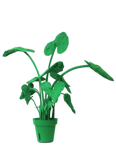 Wandschappen Alocasia L Decorative Wool Felt Plant Luisaviaroma Luxury Shopping Worldwide Shipping Florence