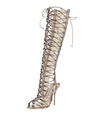 Clementine Strappy To The Knee Gladiator Sandal Boot Gunmetal Sophia Webster Grey