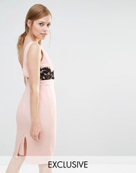 Elise Ryan V Back Pencil Dress With Lace Trim Nude Black Pink