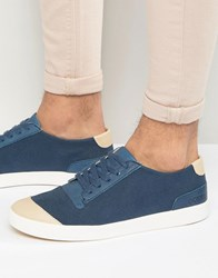 Pointer Richard Plimsolls Blue