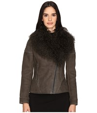 Zac Posen Hazel Mongolian Shearling Jacket Slate Greay Women's Coat Brown