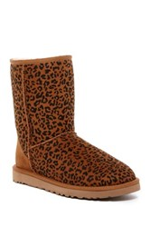 Classic Short Rosette Uggpure Tm Lined Boot Brown
