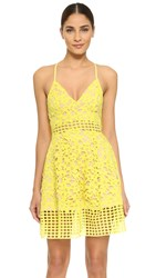 Lovers Friends Bellini Dress Sunshine