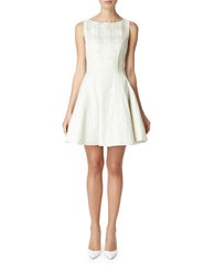 Erin Fetherston Sleeveless Fit And Flare Dress Silver Ivory