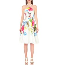 Ted Baker Corpina Forget Me Not Halterneck Dress White