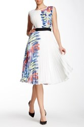 Gracia Pleated Sleeveless Print Dress Multi