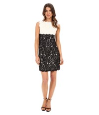 Adrianna Papell Aline Empire Waist Shift Dress Ivory Black Women's Dress Multi