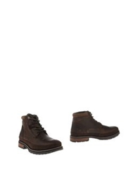 Cat Ankle Boots Cocoa