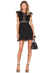 Cynthia Rowley Wild Flower And Geo Lace Mini Dress Black