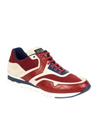 Stefano Ricci Olympia Croc Detail Sneaker Red