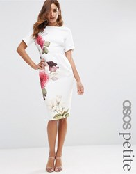 Asos Petite Wiggle Dress With Rose Placement Print Multi