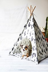Pipolli Womens Big Bite Dog Tee Pee
