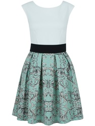 Closet Damask Box Pleat Skater Dress Green