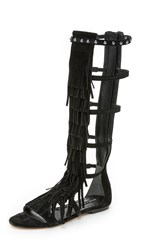 Alice Olivia Paula Fringe Gladiator Sandals Black