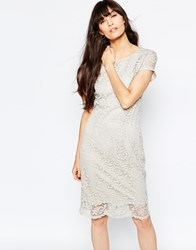 Selected Charlotte Lace Pencil Dress Silver Cloud