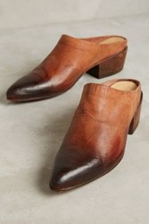 Anthropologie Lucchese Eliza Mules Brown