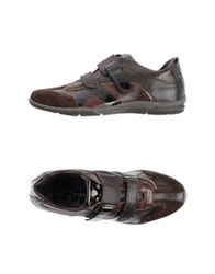 Cult Low Tops And Trainers Dark Brown