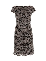 Gina Bacconi Vintage Corded Lace Dress Beige