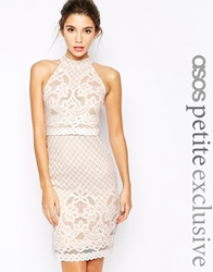 Asos Petite Bodycon Dress In Lace With High Neck White
