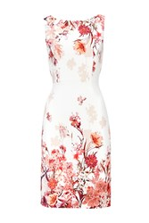 Wallis Petite Pink Floral Shift Dress Multi Coloured