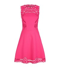 Ted Baker Verony Embroidered Skater Dress Female Pink