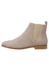 Zign Ankle Boots Taupe