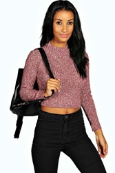 Boohoo Turtle Neck Long Sleeve Crop Jumper Berry