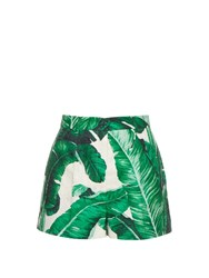 Dolce And Gabbana Banana Leaf Print Cotton And Silk Blend Shorts Green Multi