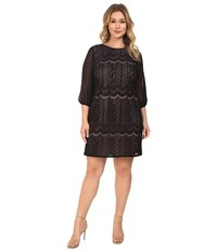 Adrianna Papell Plus Size Striped Lace Shift Dress W Sleeve Black Pale Pink Women's Dress