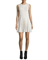 Alexander Mcqueen Sleeveless Spine Lace Dress Ivory