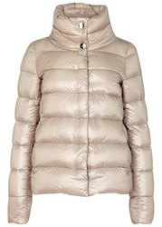 Herno Blush Quilted Shell Jacket Light Pink