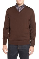 Men's Thomas Dean Regular Fit V Neck Merino Wool Sweater Brown