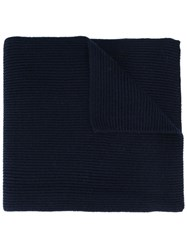Polo Ralph Lauren Ribbed Knit Scarf Blue