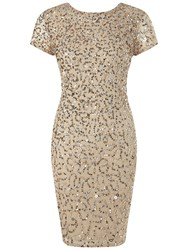 Adrianna Papell Shutter Sleeve Beaded Cocktail Dress Champagne Silver