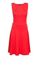 Indulgence Skater Dress Red