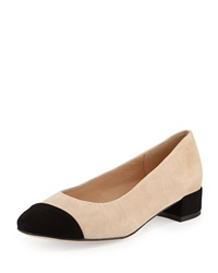 Veronice Cap Toe Low Heel Pump Andre Assous